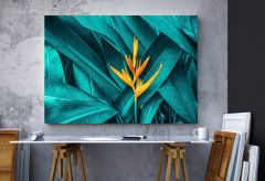 Artex Canvas